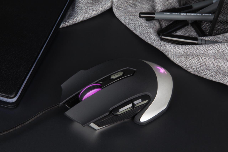 Rapoo-VPRO Gaming Optical Mouse V310_Scenario