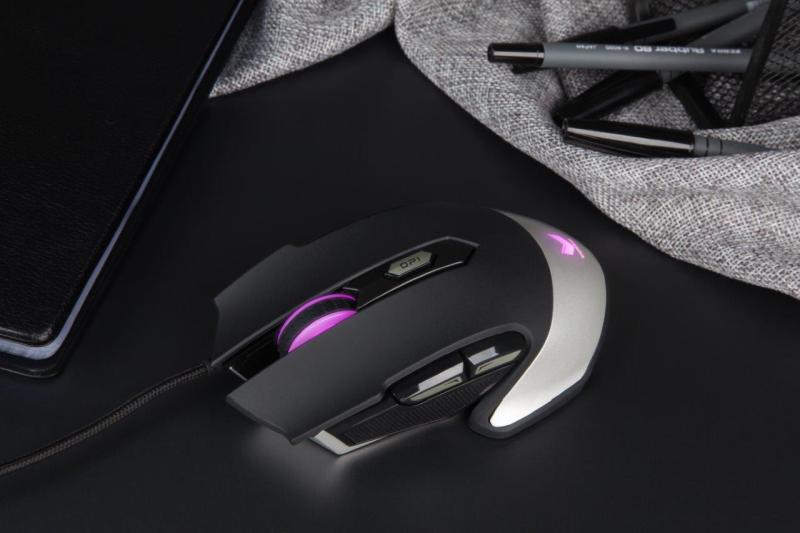 Rapoo-VPRO Gaming Optical Mouse V310_Scenario